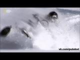 Сделай или умри (Do or Die)/ Нападение акулы (05)
