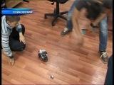 Школьники Нефтеюганского района собирают роботов